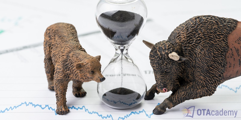 Investment strategies for a bear market.